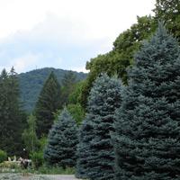 Город Горячий Ключ - курортный парк